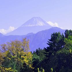 17年11月8日南アルプス市富士山